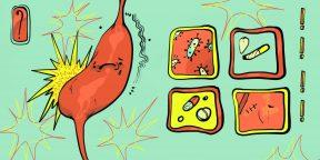 Как не заработать язву желудка и чем её лечить, если это произошло