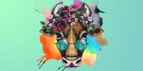 15 простых способов нарисовать быка или корову