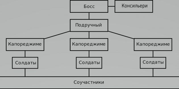 Структура коза ностра