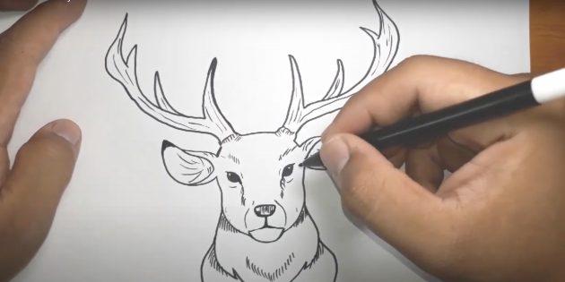 Как нарисовать оленя: обведите уши, сделайте штрихи под глазами