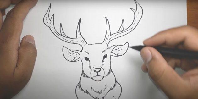 Как нарисовать оленя: создайте текстуру шрихами
