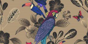 Проверка на внимательность: сколько попугаев на картинке? Найдите всех!