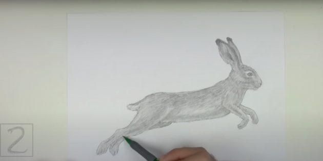 Как нарисовать реалистичного зайца в прыжке