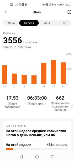 Amazfit Neo: статистика в приложении