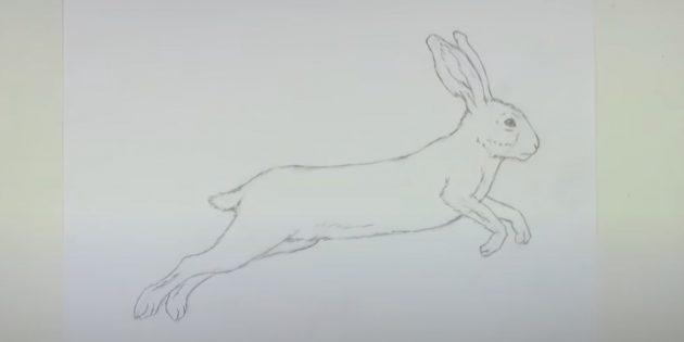 Как рисовать зайца: сотрите вспомогательные линии