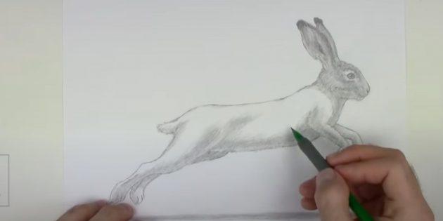 Как рисовать зайца: закрасьте мордочку
