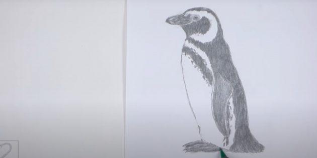 Как рисовать пингвина: закрасьте крыло, спину, хвост и лапы