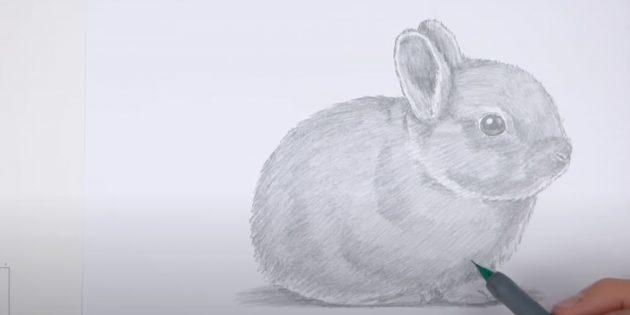 Как нарисовать кролика: закрасьте туловище и лапы