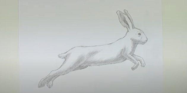 Как рисовать зайца: закрасьте живот