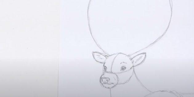 Как нарисовать оленя: нарисуйте рот и детализируйте уши