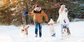 11 новогодних традиций, для которых сейчас самое время