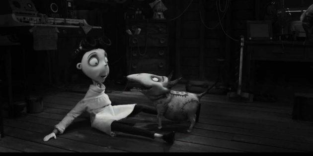 Мультфильмы про монстров: «Франкенвини»