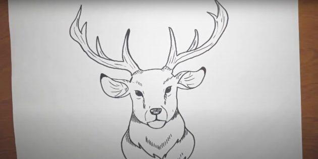 Как нарисовать морду оленя в реалистичном стиле