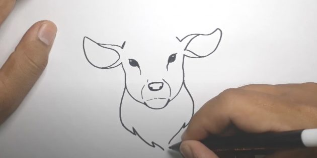 Сделайте дуги на ушах, нарисуйте «воротник» из шерсти