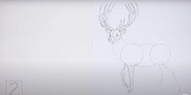 Как нарисовать оленя: прорисуйте вторую переднюю ногу