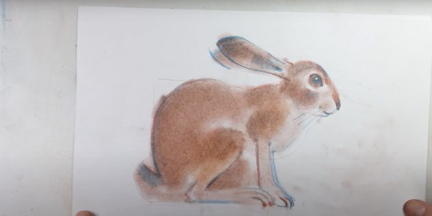 Как нарисовать реалистичного сидящего зайца