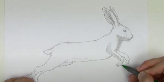 Как рисовать зайца: начните закрашивать зайца