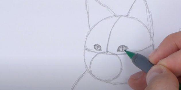 Как нарисовать лису: Нарисуйте зрачки и блики