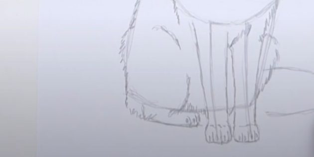 Как нарисовать лису: Детализируйте лапу