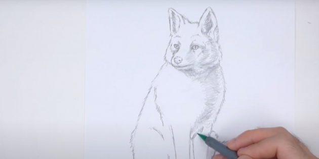 Как нарисовать лису: Покажите тень