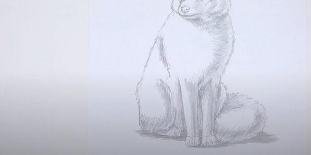 Как нарисовать лису: Нарисуйте тень под лисой