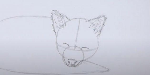 Как нарисовать лису: Прорисуйте уши