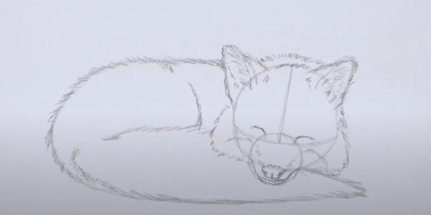 Как нарисовать лису: Нарисуйте шерсть на теле