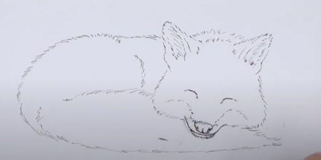 Как нарисовать лису: Обведите рисунок ручкой