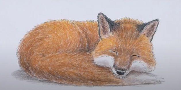 Как нарисовать лису: Сделайте шерсть плотнее
