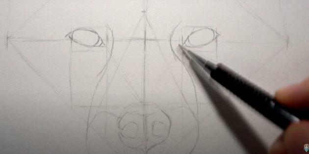Как нарисовать лису: Наметьте переносицу