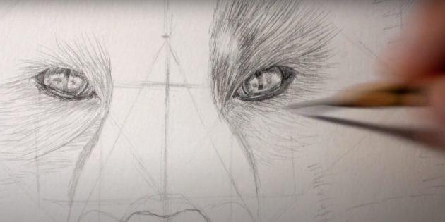 Как нарисовать лису: Нарисуйте глаза и шерсть вокруг