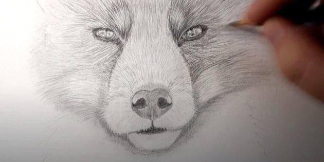 Как нарисовать лису: Нарисуйте шерсть на скулах