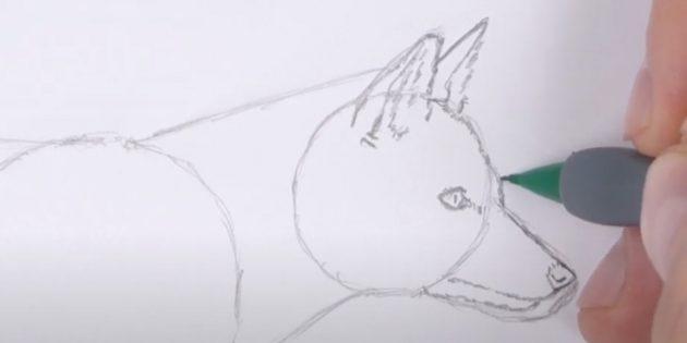 Как нарисовать лису: Нарисуйте второе ухо