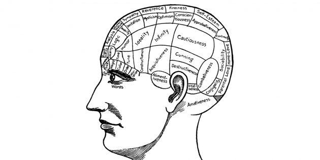 Френология: карта черепа по Галлю