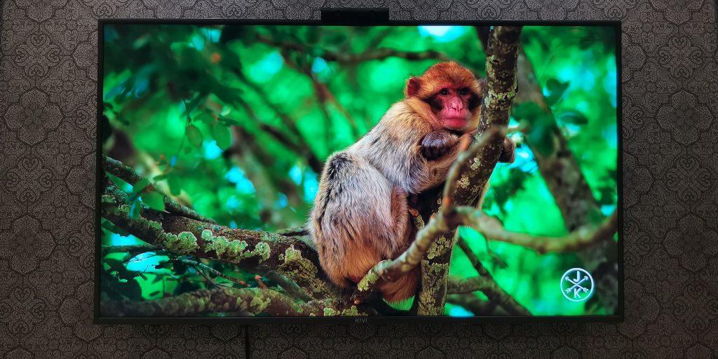 4К-телевизор KIVI 55U710KB: экран