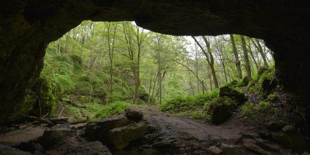 Первобытные люди не обитали в пещерах