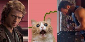 Обвал рубля, печенеги и «Недрочабрь»: 13главных тем для мемов в 2020 году
