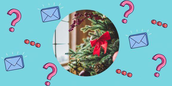 Как выбрать новогоднюю ёлку?