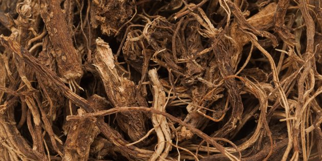 Травы и добавки для похудения: форсколин