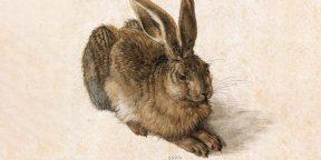 21 способ нарисовать зайца или кролика