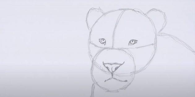 Как нарисовать льва: Наметьте рот