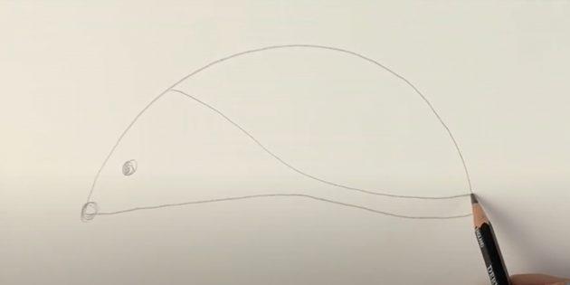 Как рисовать ёжика: наметьте нос и глаз, проведите линию
