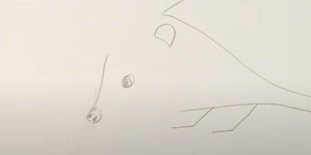 Как рисовать ёжика: нарисуйте переносицу
