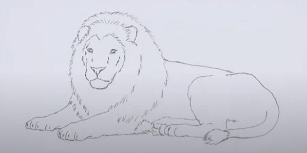 Как нарисовать льва: Обведите рисунок и сотрите набросок