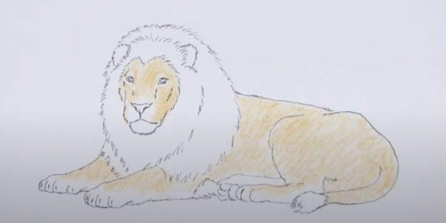 Закрасьте льва