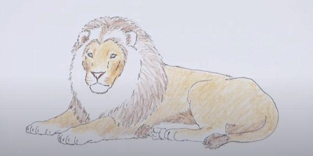 Как нарисовать льва: Добавьте коричневый цвет