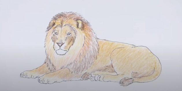 Как нарисовать льва: Добавьте жёлтый и оранжевый цвета