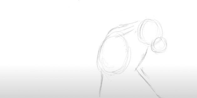 Как нарисовать льва: Наметьте шею, грудь и лапы