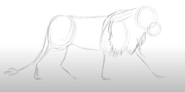 Как нарисовать льва: Покажите гриву