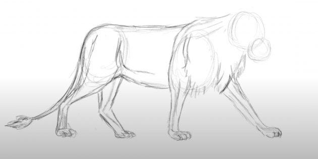 Как нарисовать льва: Прорисуйте дальние лапы